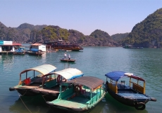 Cat Ba Travel Guide